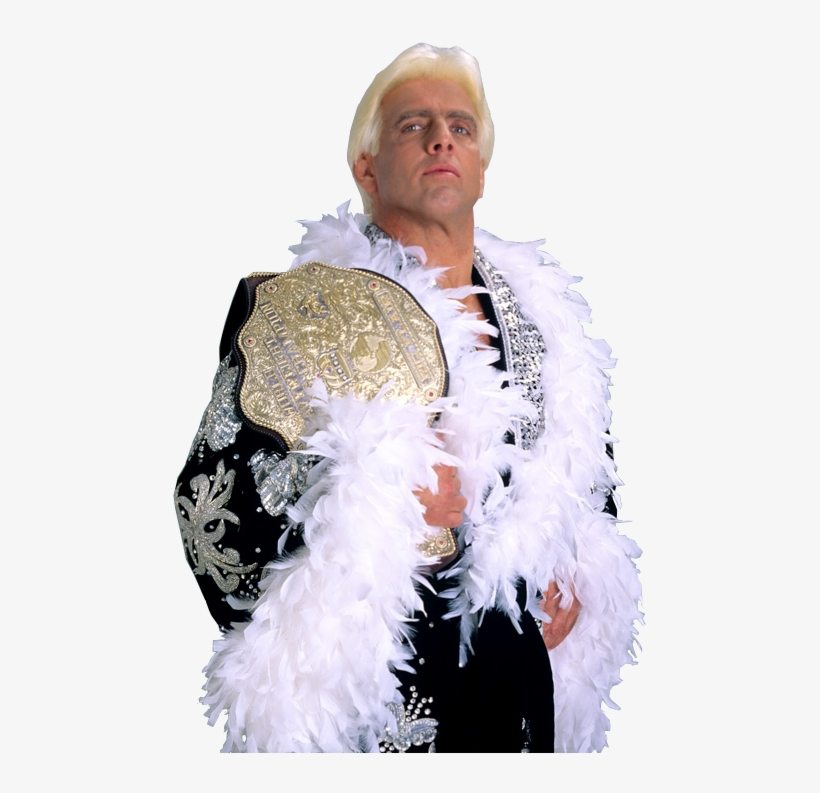 Ric Flair World Heavyweight Champion.