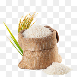 Parboiled Rice PNG and Parboiled Rice Transparent Clipart.