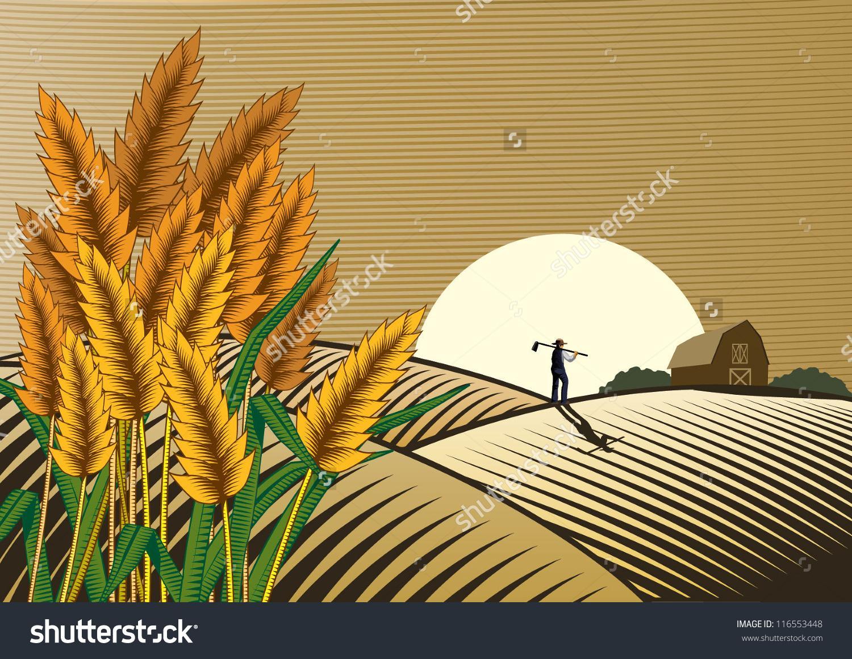 Similiar Rice Field Clip Art Keywords.