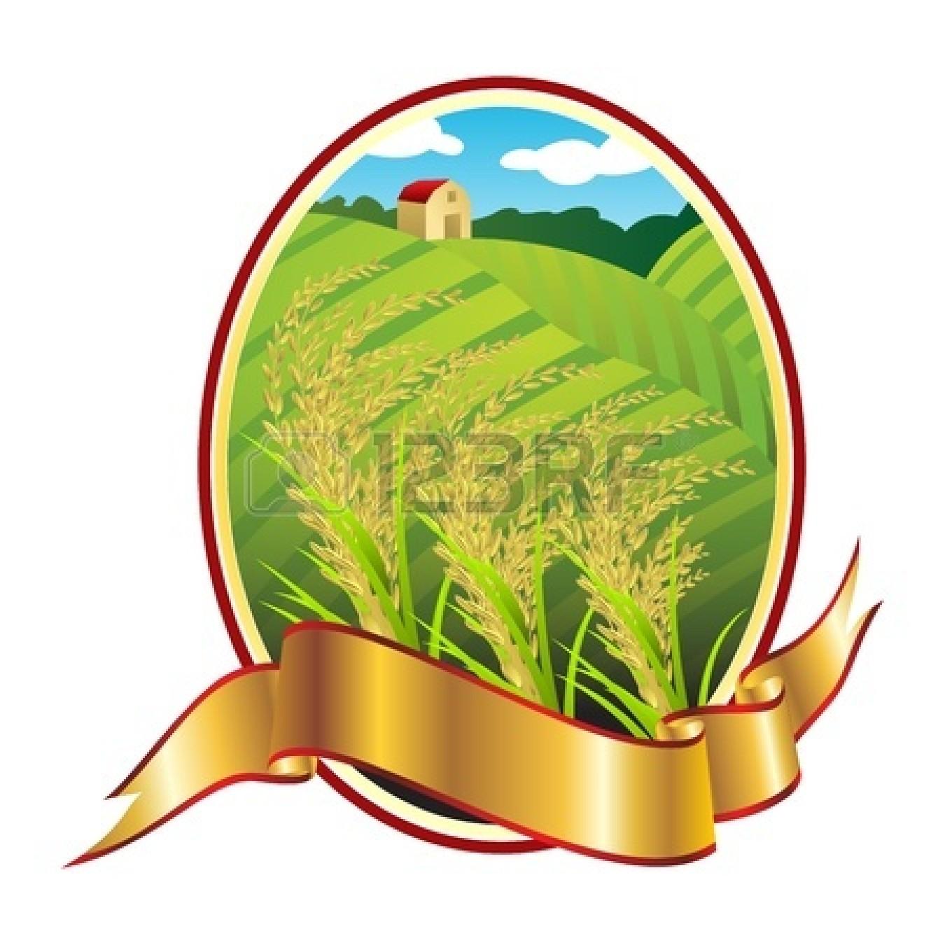 rice grain : Emblem of Thai.