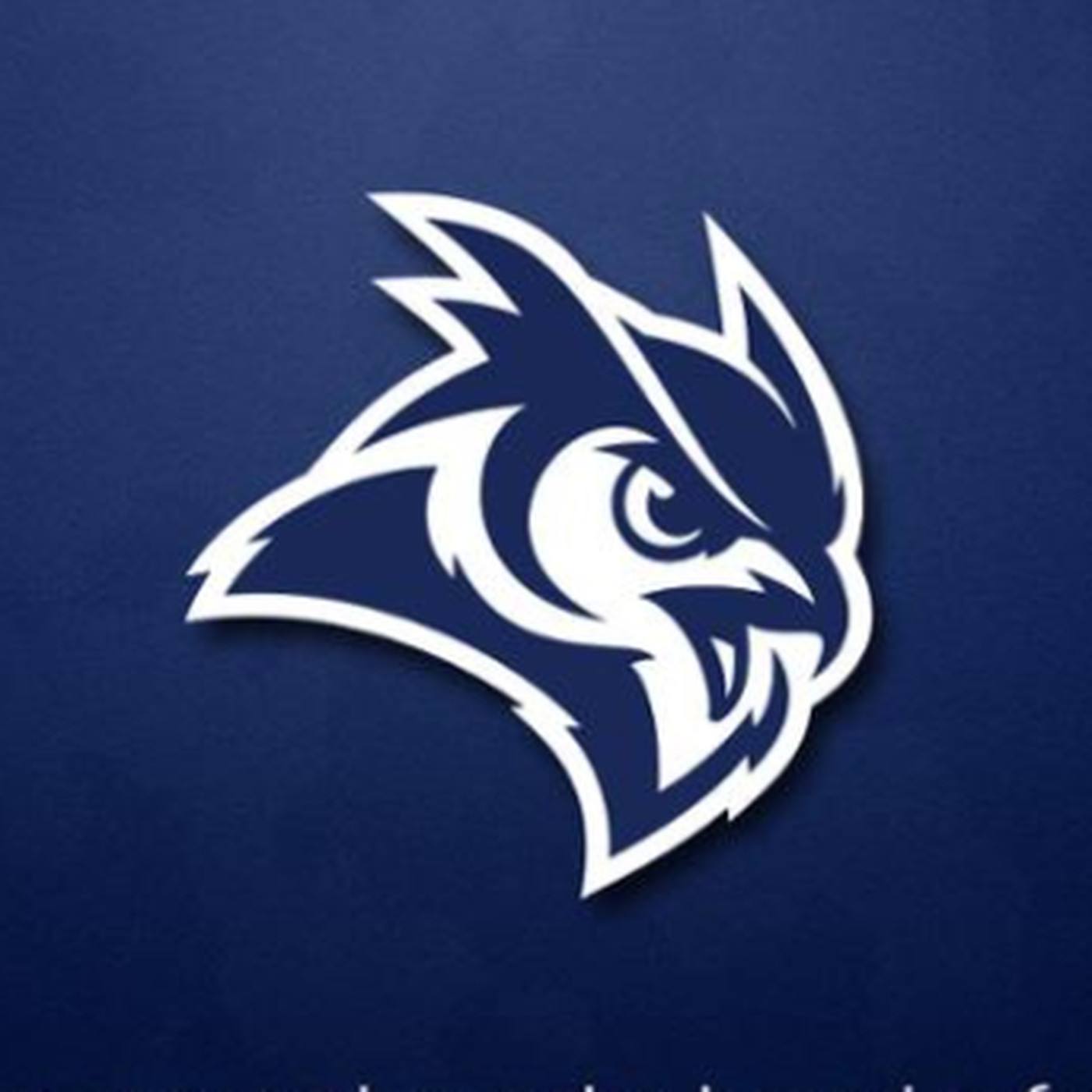 The Rice Owls have a new logo, and it\'s pretty sweet.