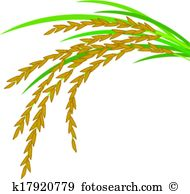 Rice plant Clip Art Illustrations. 1,319 rice plant clipart EPS.