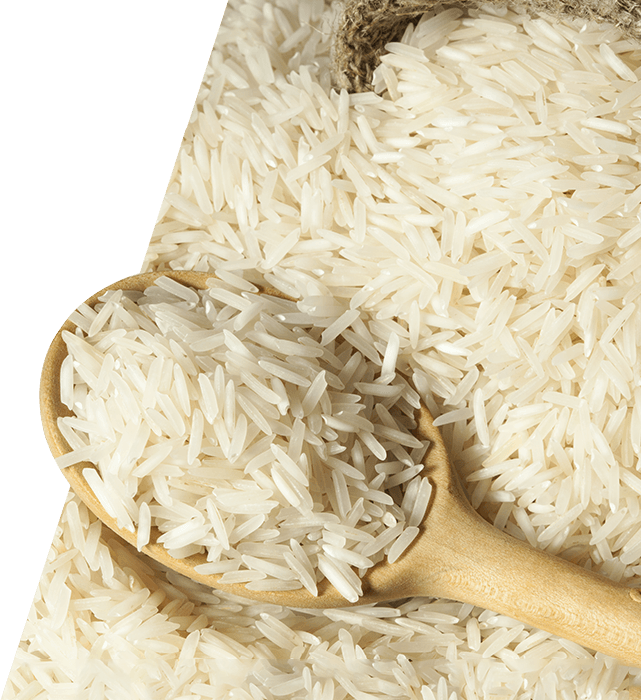 Rice PNG Image.