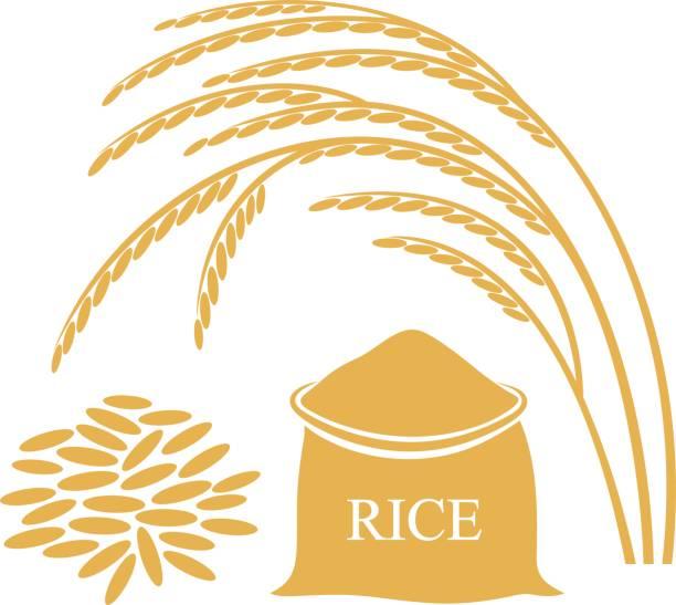 Rice Grain Clipart.