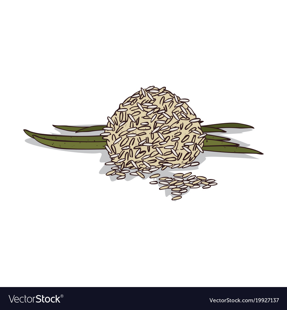 Isolated clipart rice.