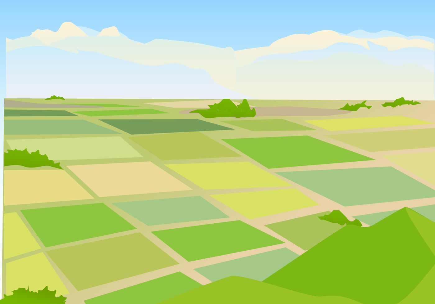 Vector Illustration of Rice field Landscape.
