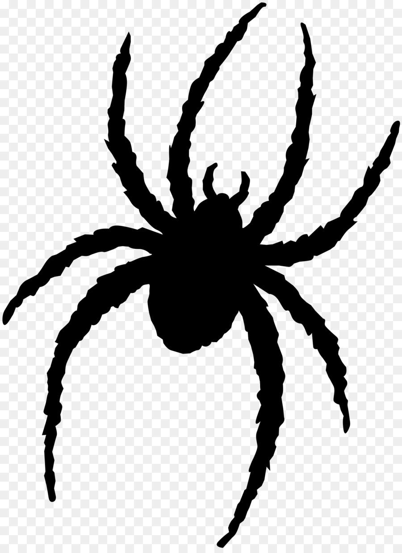 Spiders Cartoon png download.