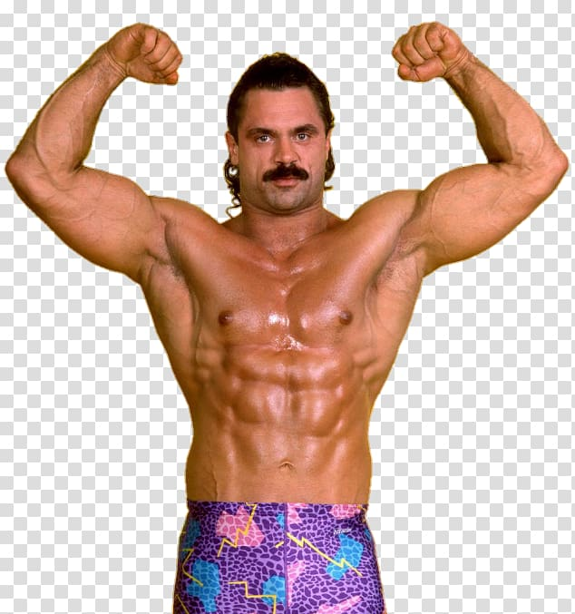 Rick Rude WWE Intercontinental Championship WWF Superstars.