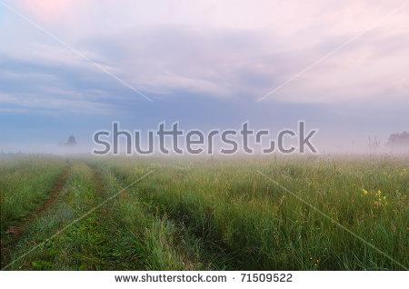 Foggy Field Banque d'Image Libre de Droit, Photos, Vecteurs et.