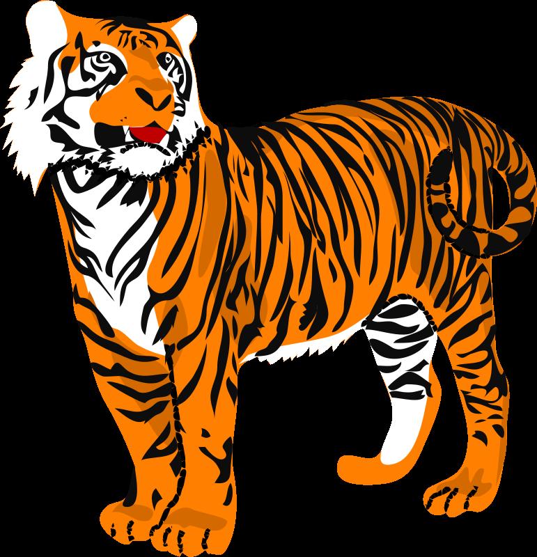 Cartoon Baby Tigers.