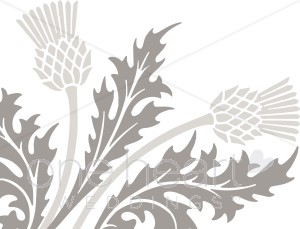 1000+ images about thistle on Pinterest.