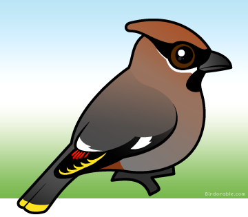 Cute Bohemian Waxwing by Birdorable < Meet the Birds.