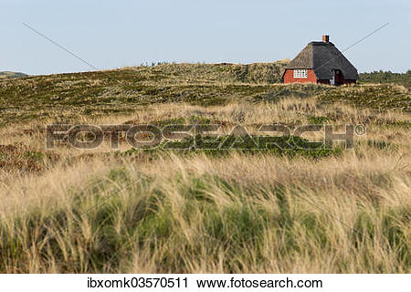 "Stock Photography of ""Thatched cottage surrounded by beachgrass."
