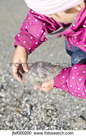 Stock Photography of Denmark, Ringkoebing, little girl on beach.