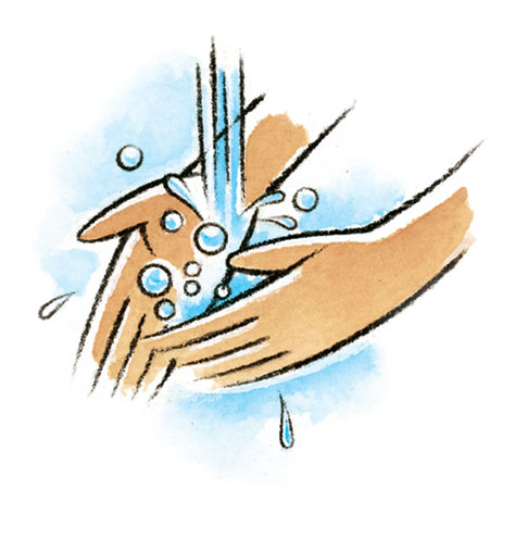 Rinse Hands Clipart.