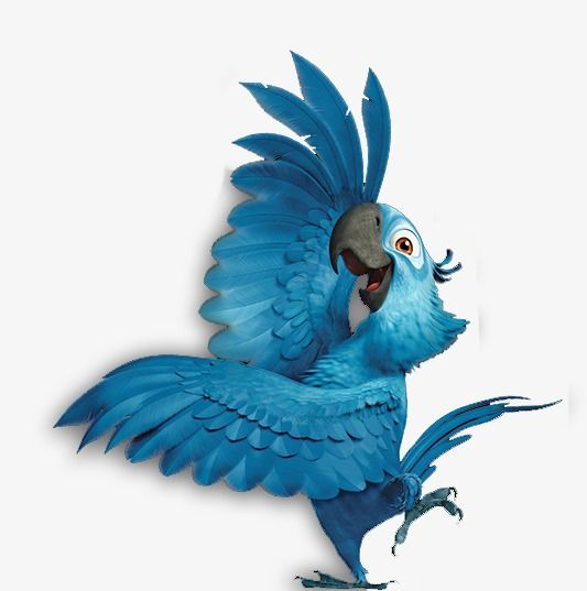 Parrot, Bird PNG Transparent Clipart Image and PSD File for.