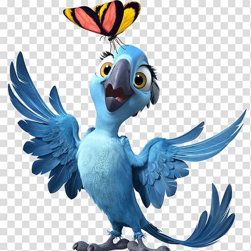 Rio Jewel illustration, macaw parrot bird beak fauna, Rio2.