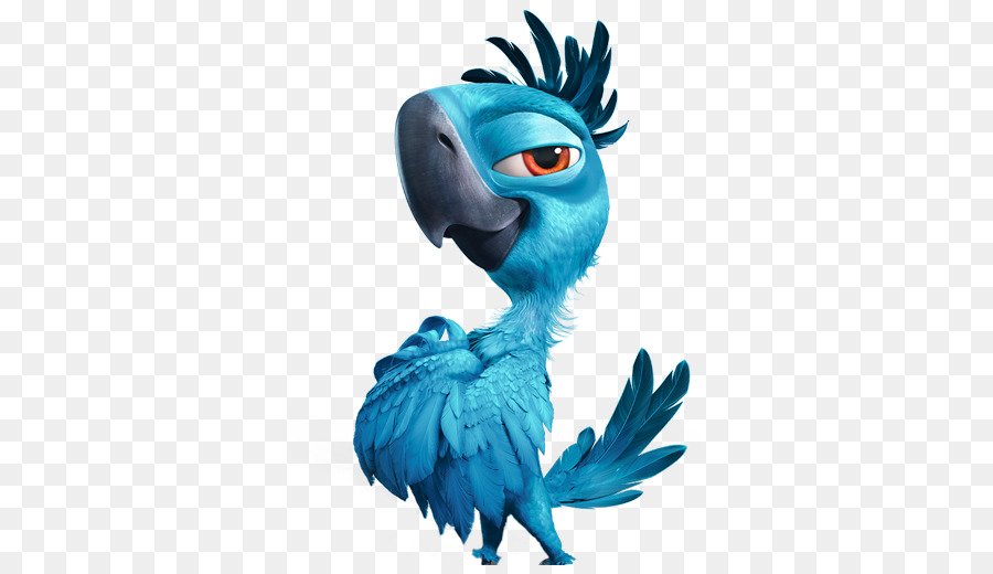 Rio Bird png download.