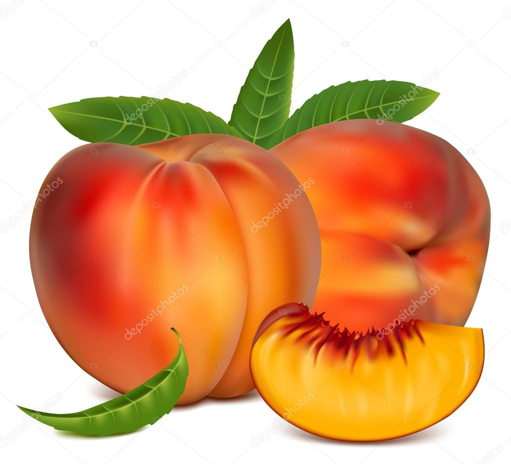 Ripe peach fruit — Stock Vector © ivelly #33523793.
