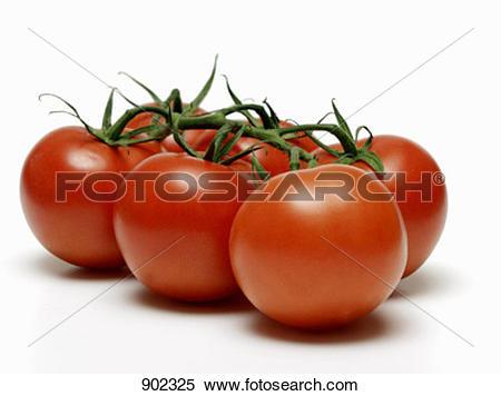 Stock Image of Vine Ripened Tomatoes 902325.