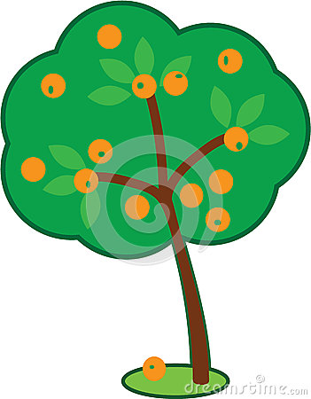 Jujube Fruits Ripened Tree Stock Illustrations.