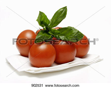 Stock Photography of Vine Ripened Tomatoes with Basil on Paper.