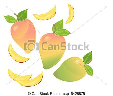 Vectors Illustration of mango.