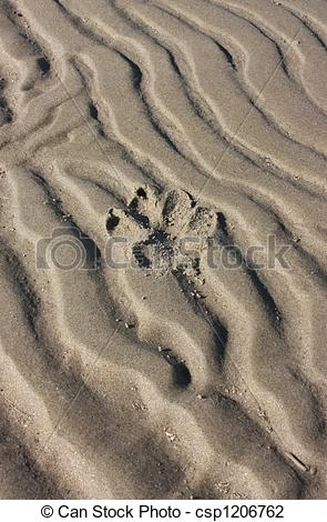 Stock Photo of Dog\\\'s Paw Print in Sand.