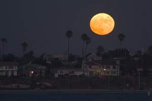 Full Moon Photo Clipart Image.