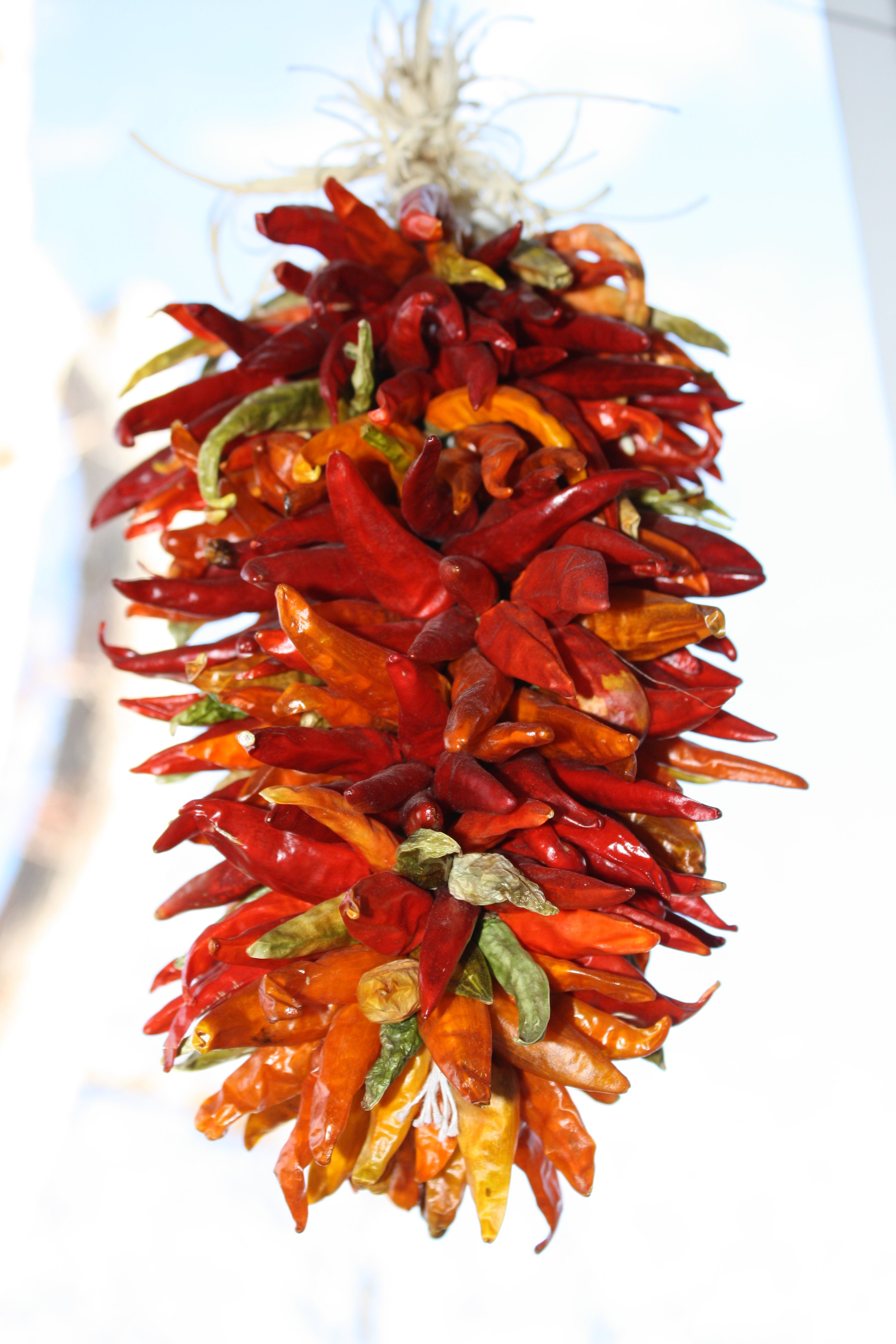 Hanging Chili Peppers Ristra Decoration Picture.
