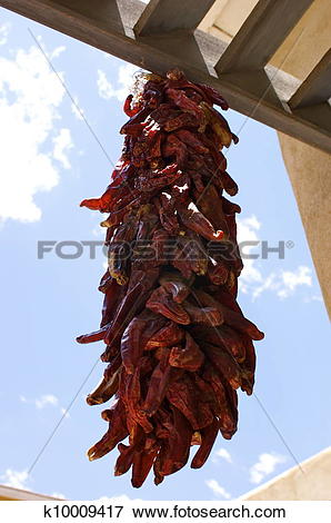 Picture of Red chili ristras k10009417.