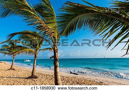 Stock Photography of beach, Riu Palace, hotel, Punta Cana.