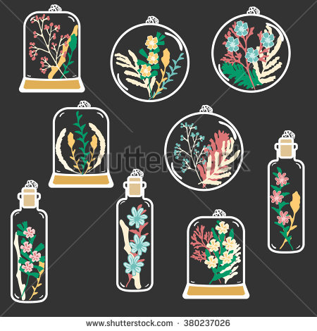 Set Hand Drawn Floral Terrariums Vector Stock Vector 380237026.