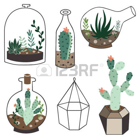 736 Terrarium Cliparts, Stock Vector And Royalty Free Terrarium.