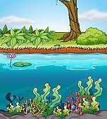 River Bank Clip Art.