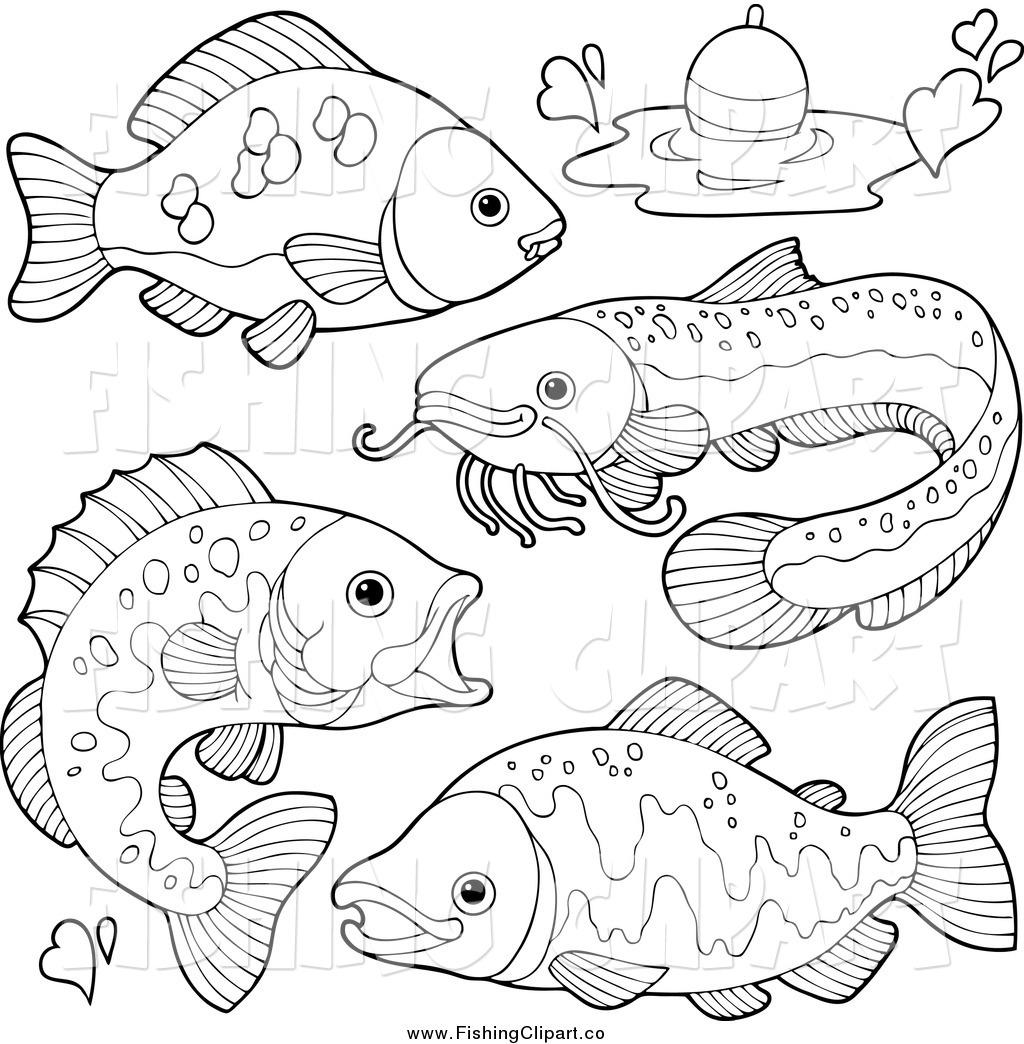 Free fresh water fish clipart.