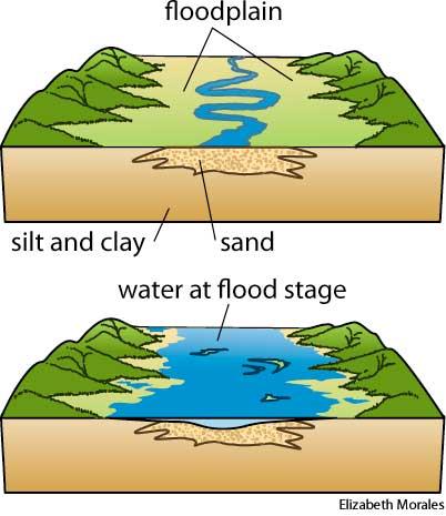 Floodplain dictionary definition.