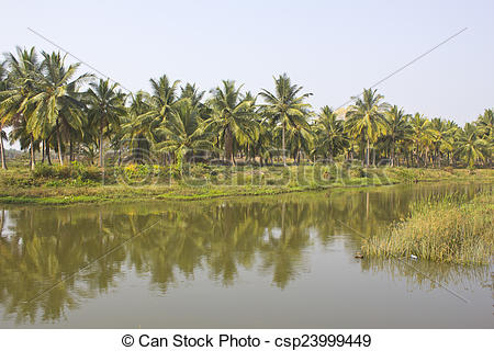 Stock Photo of Indian river.