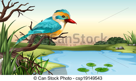 EPS Vector of A river kingfisher.