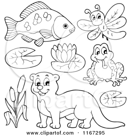 Royalty Free Fish Illustrations by visekart Page 5.