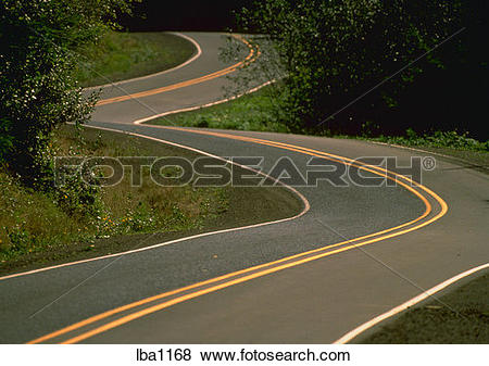 Pictures of Winding road, Yachats River Road, Oregon. lba1168.