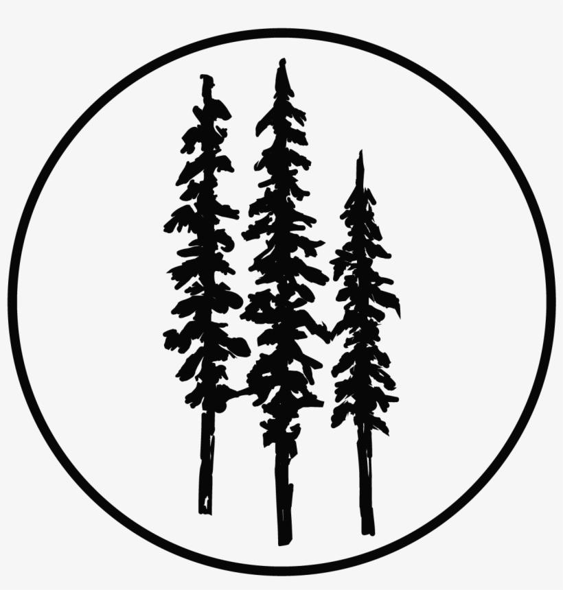 Pine Tree Clipart River Tree.