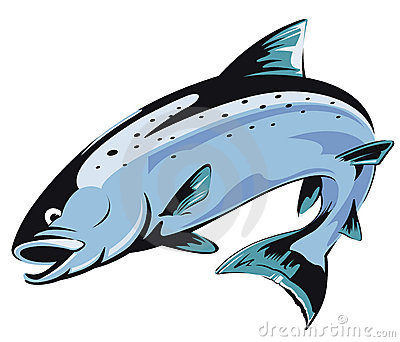 Riverbed steelhead clipart.