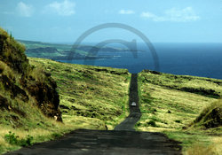 Back Road to Hana Clip Art.