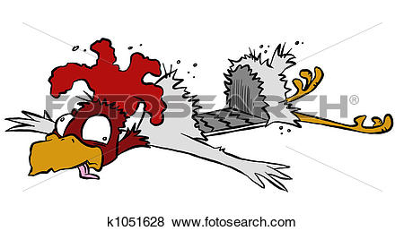 Roadkill Stock Photo Images. 203 roadkill royalty free pictures.
