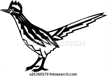 Roadrunner Bird Clipart Clipground