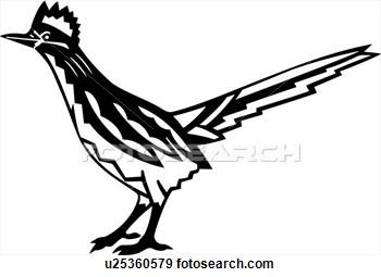 Roadrunner Bird Clipart Clipground
