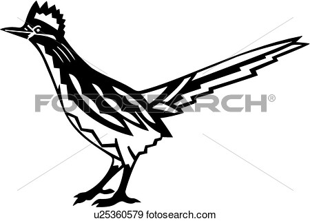 Roadrunner clipart vector, Roadrunner vector Transparent.