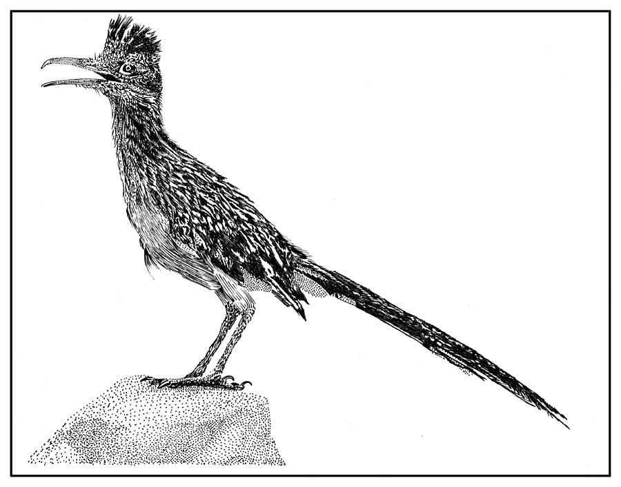 Free Roadrunner Clipart Black And White, Download Free Clip.