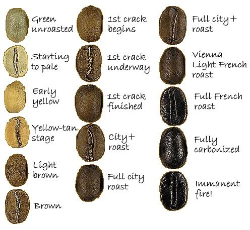 1000+ images about Green Coffee Bean on Pinterest.